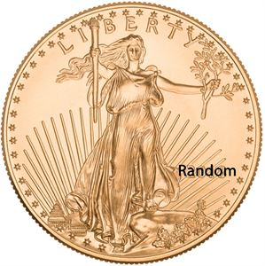 Picture of Prior Date 1 oz Gold American Eagle
